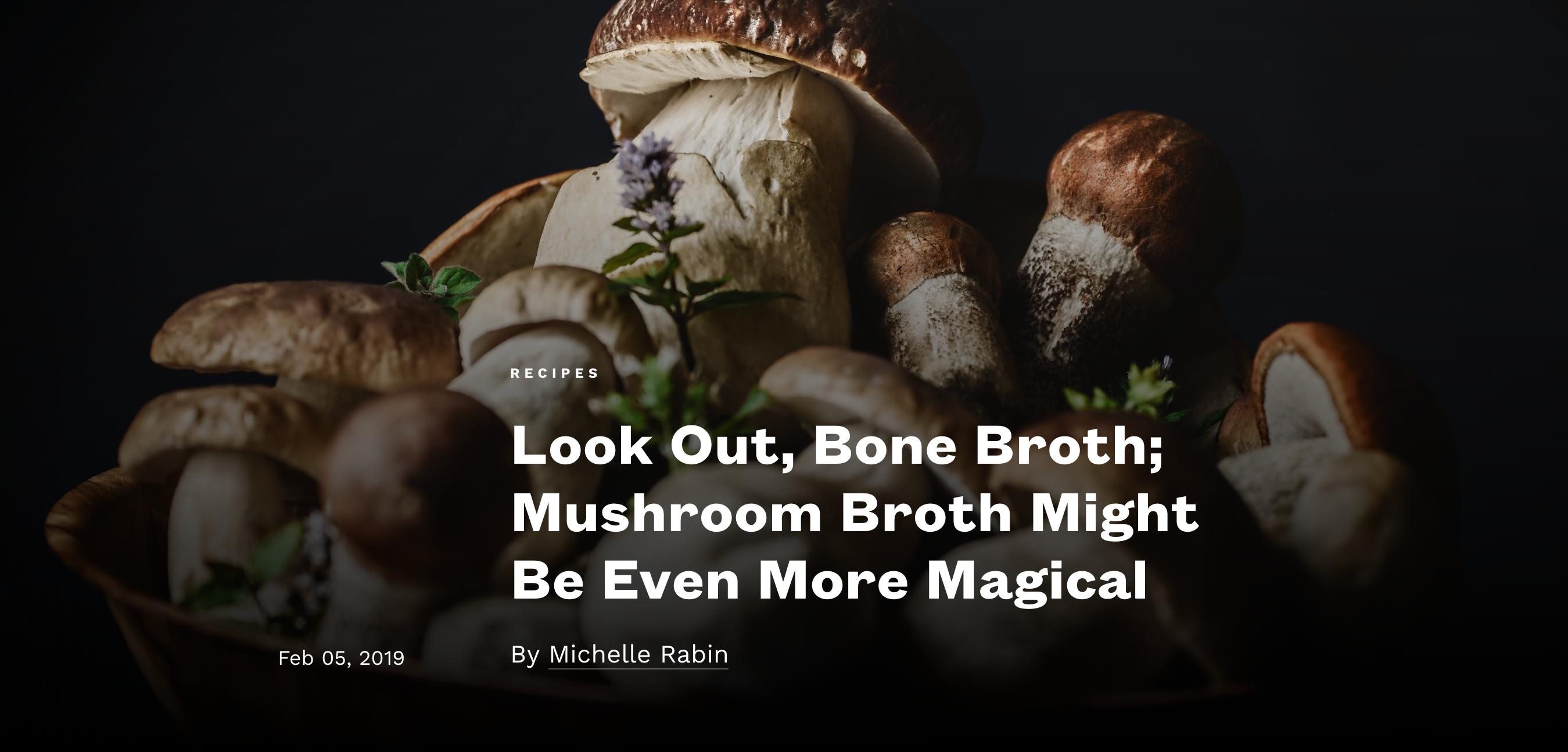 different mushrooms dark background herb flowers