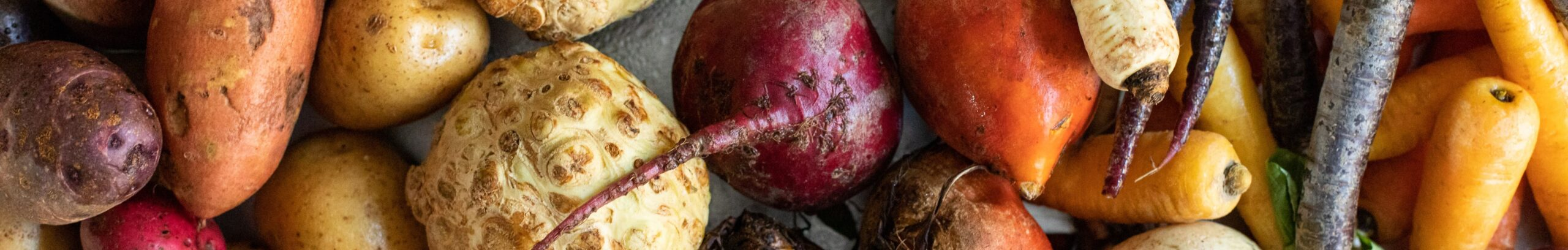 root-vegetable_cta_banner-scaled